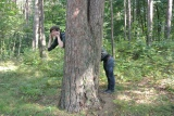 Funny orienteering in the forest